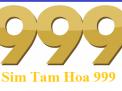 Cách tìm sim đuôi 999 theo đầu số, theo mạng, Giới thiệu về sim điện thoại có đuôi 999